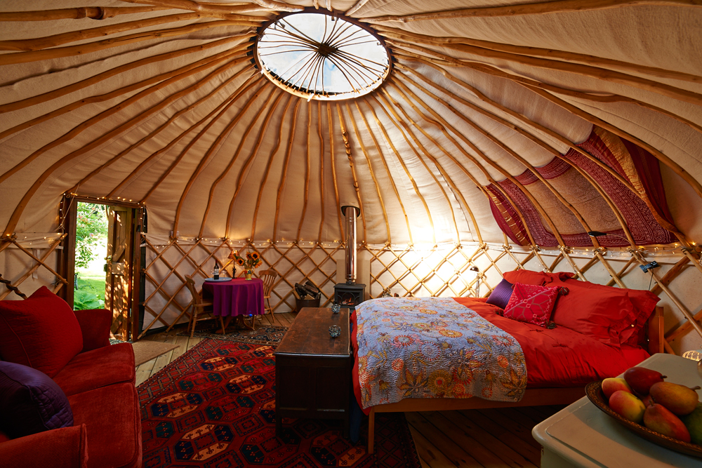 The gorgeous environment inside the yurt