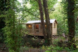 Hazel Tree Cabin